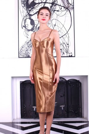 Anastasia Bronze Bustier Dress