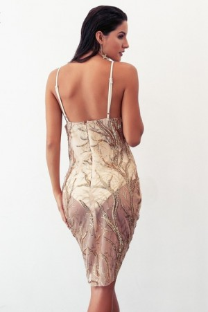 Erika Mesh Sequin Dress